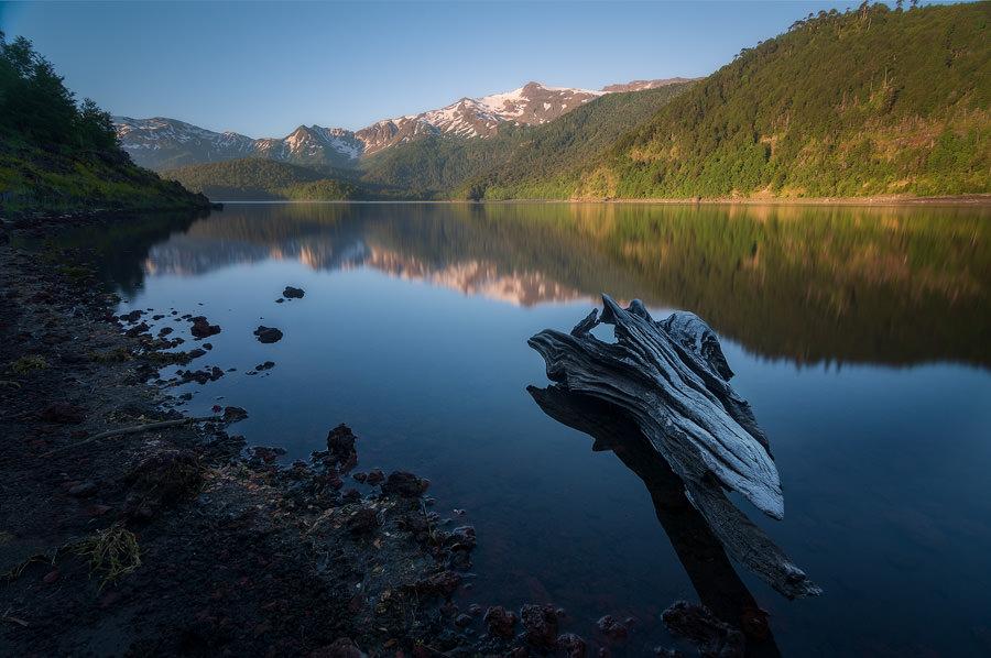 Peter Guardiola camara para fotografia de naturaleza